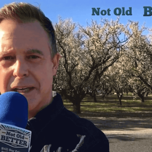 Almond Blossoms of Central California | The Not Old Better Show