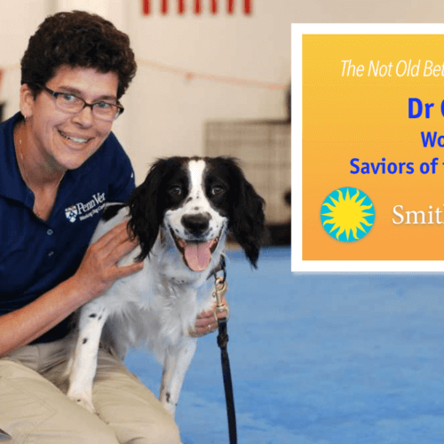 Dr Cindy Otto: Working Dogs as Saviors in the Post 9/11 World